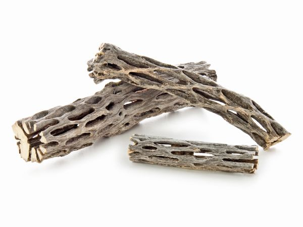 Cholla wood ( Premium)